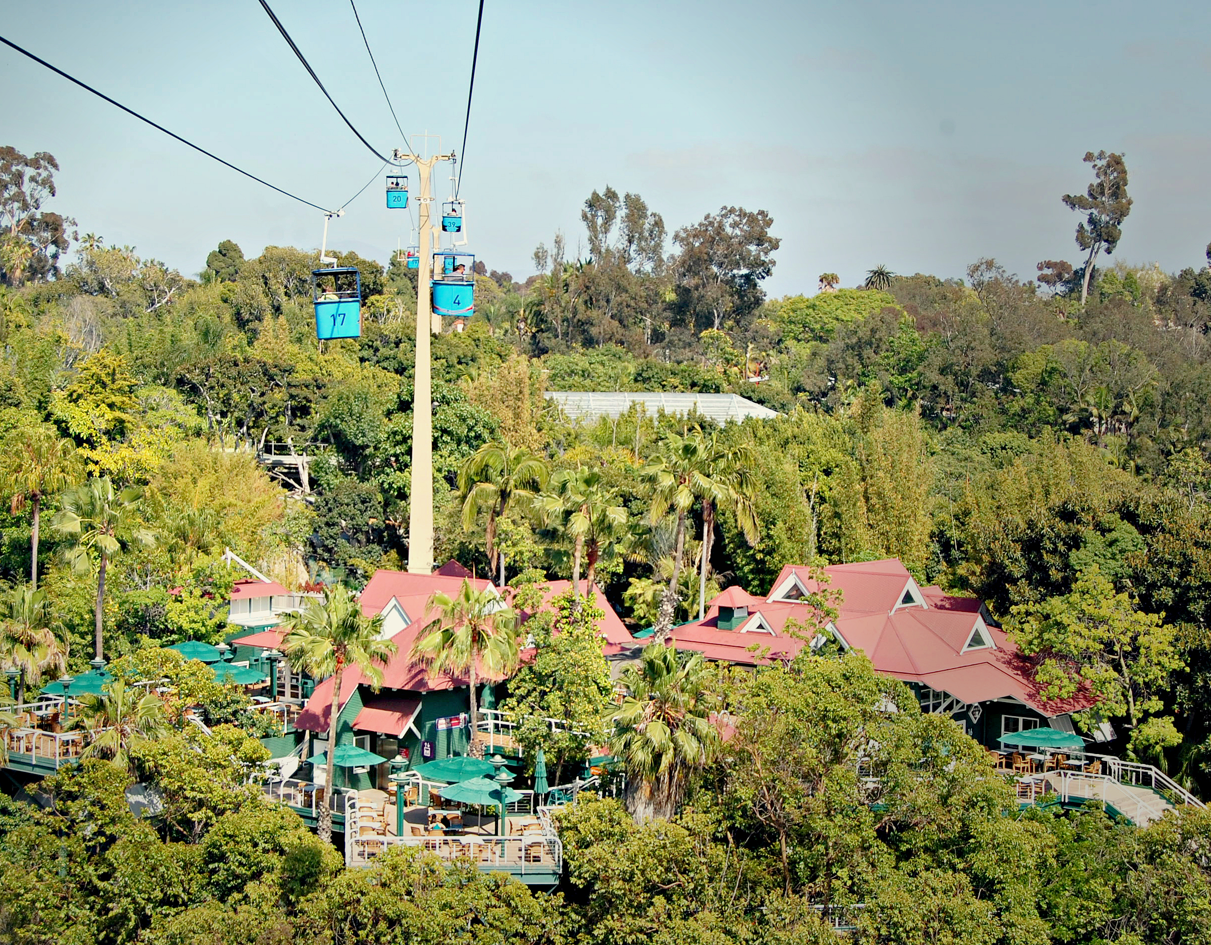 Gondolas at the San Diego Zoo, California