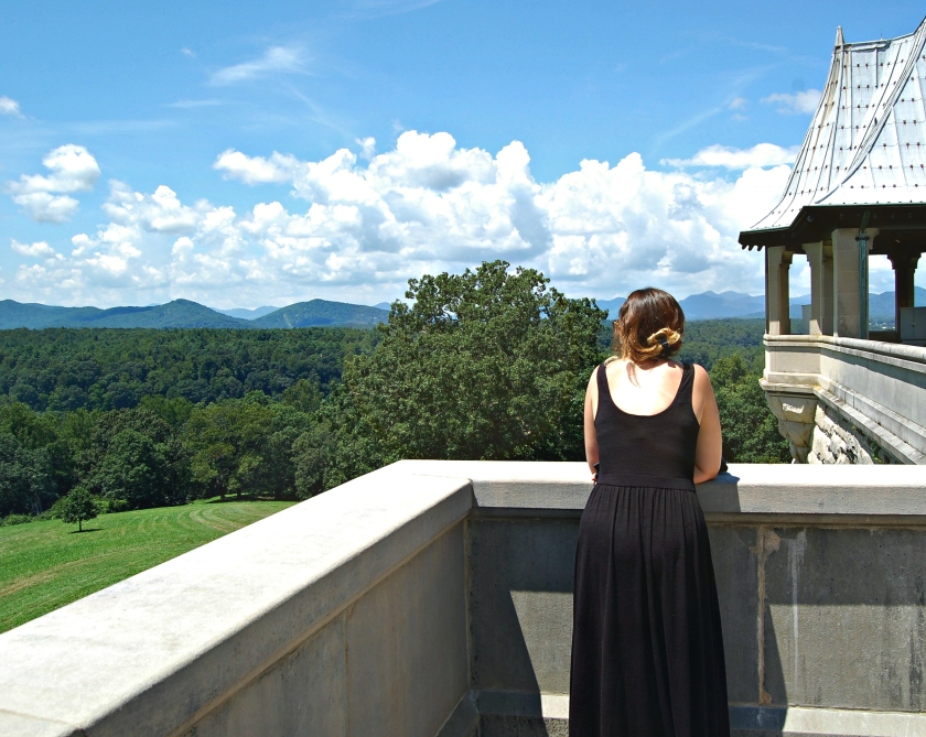 A view from the Biltmore Estate | Rosé and Reservations