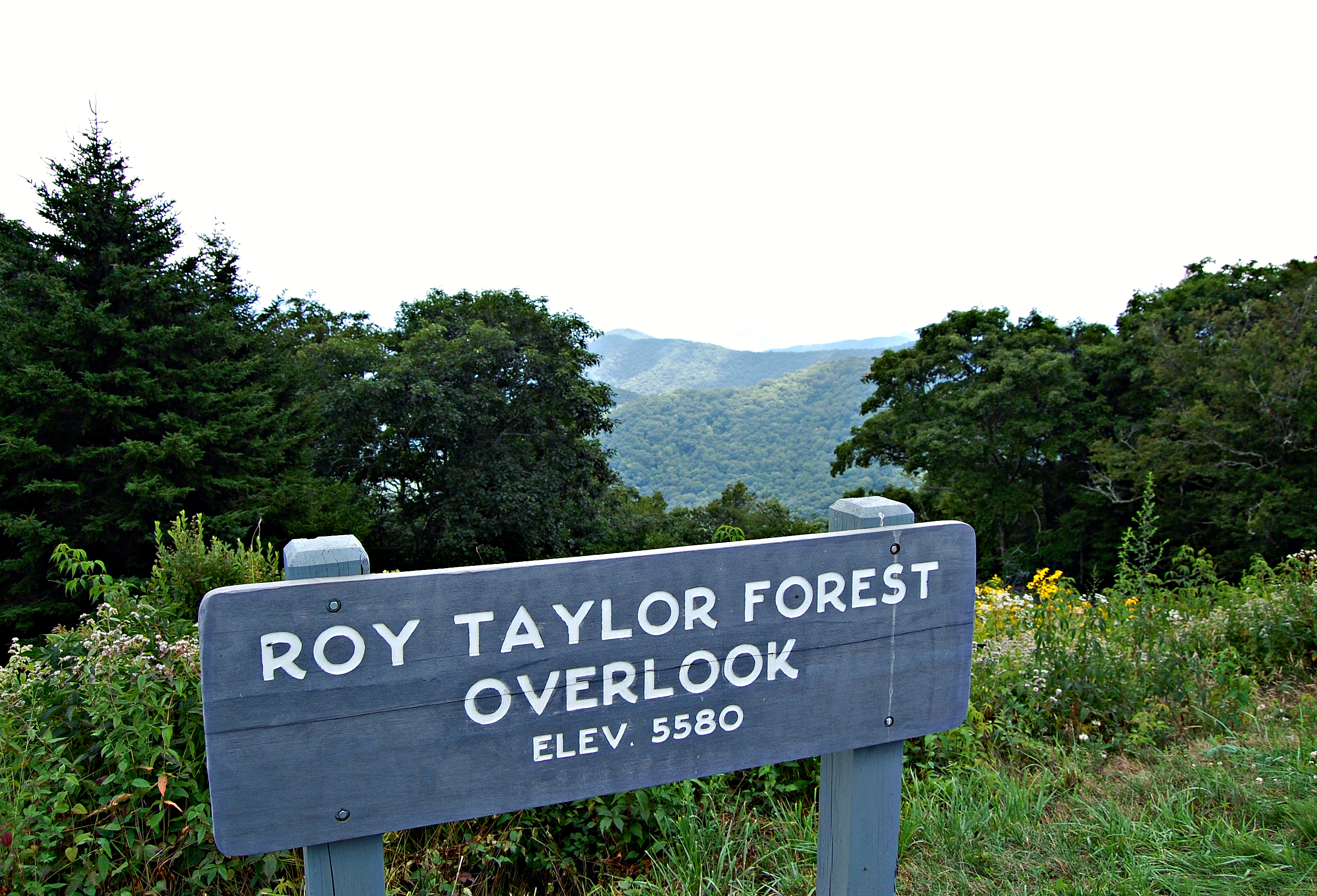 Roy Taylor Forest Overlook, Blue Ridge Parkway | Rosé and Reservations
