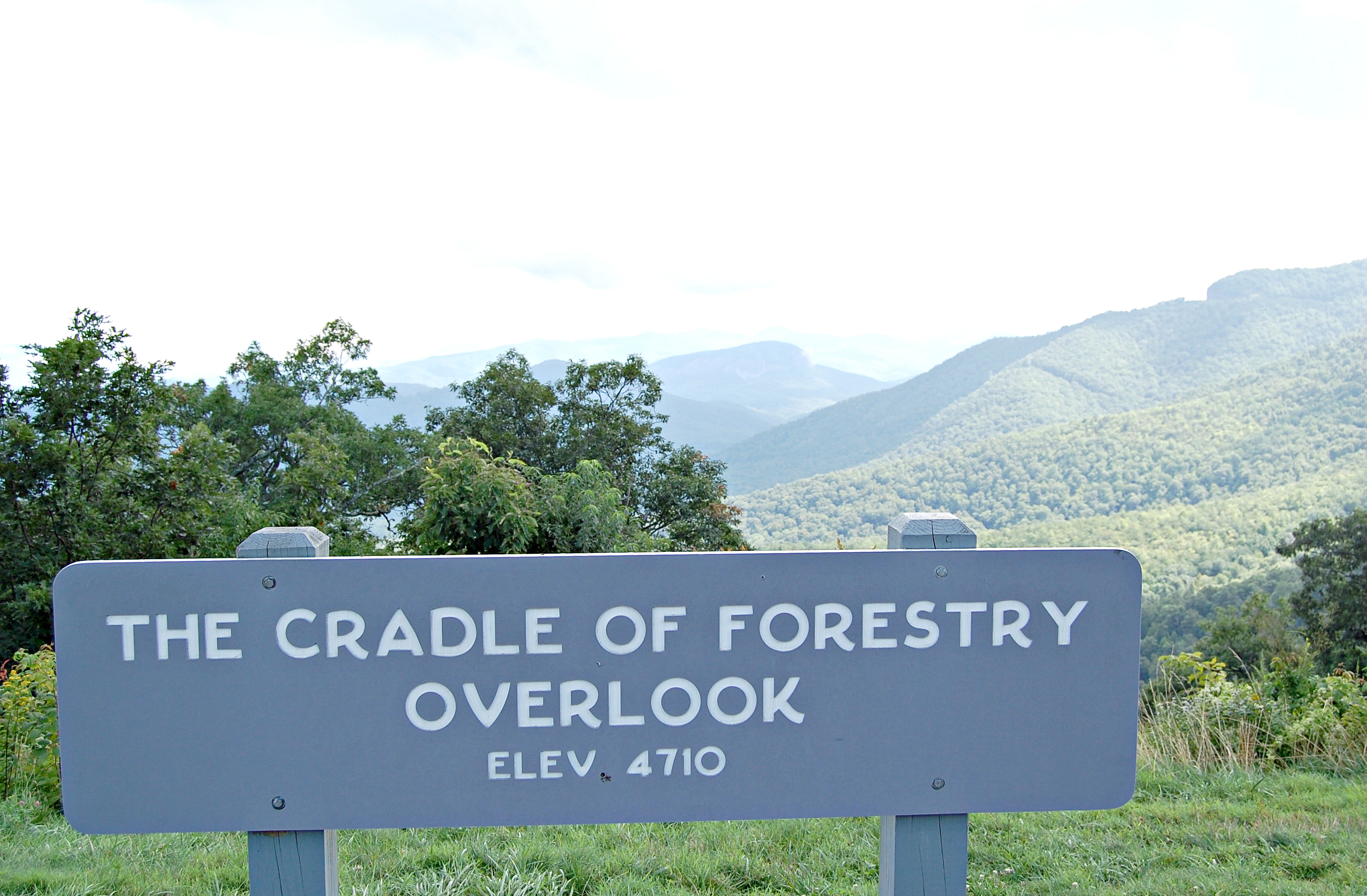 Cradle of Forestry Overlook, Blue Ridge Parkway | Rosé and Reservations